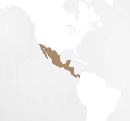 Ameryka Środkowa
